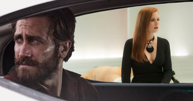 nocturnal animals recenzja